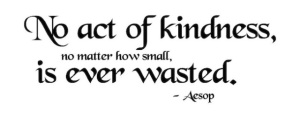 quote - kindness